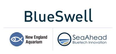 Blue Swell, New England Aquarium and SeaAhead