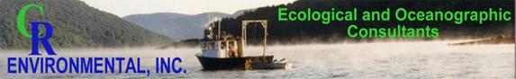 CR Environmental, Inc.
